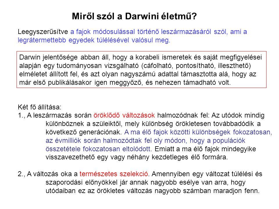 Miről szól a Darwini életmű? Darwin jelentősége abban áll, hogy a korabeli ismeretek és saját megfigyelései alapján egy tudományosan vizsgálható (cáfo