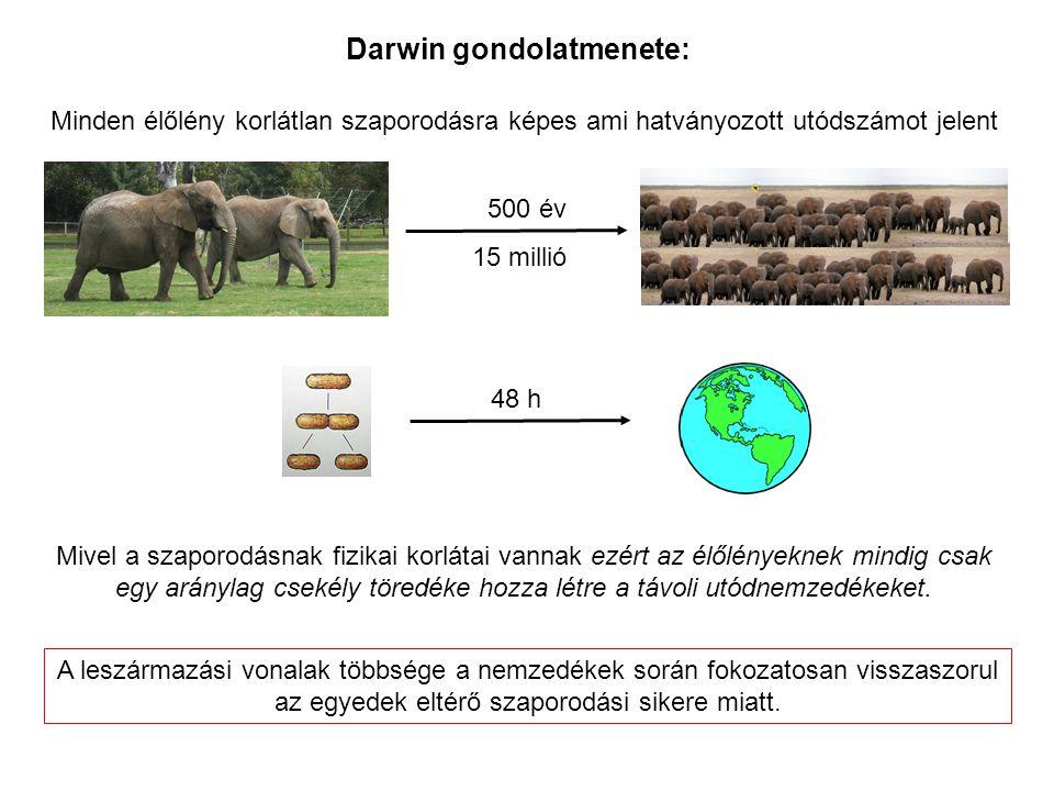 Minden élőlény korlátlan szaporodásra képes ami hatványozott utódszámot jelent Mivel a szaporodásnak fizikai korlátai vannak ezért az élőlényeknek min