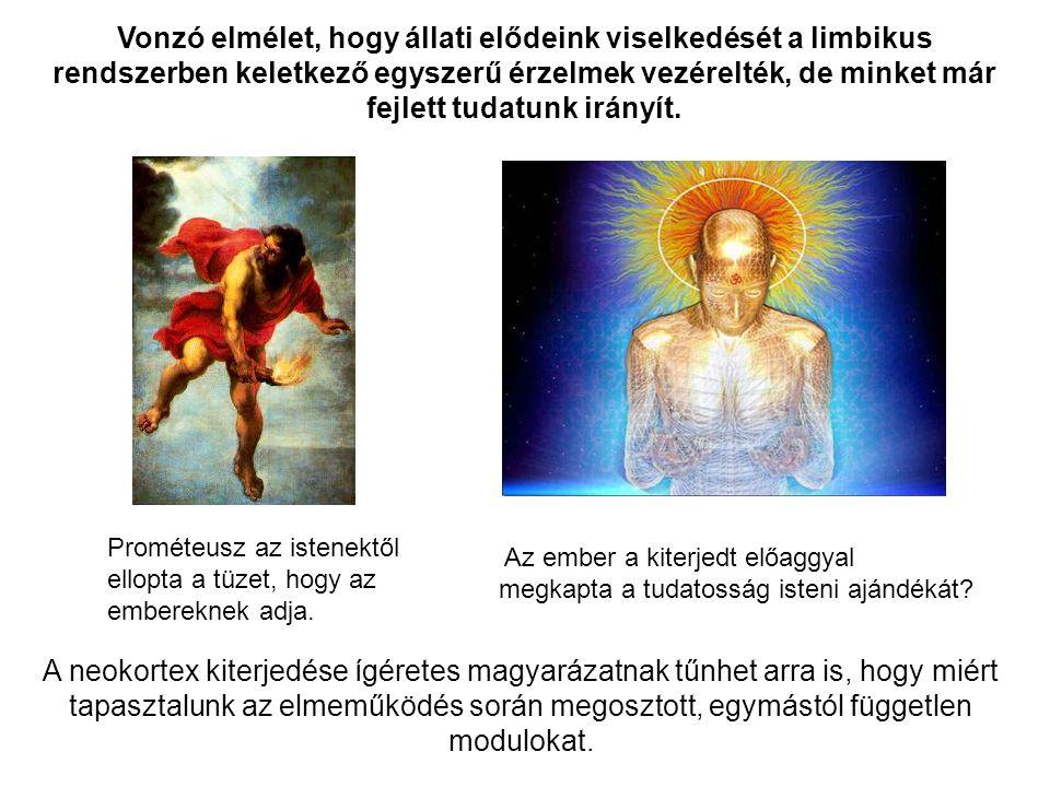 Az ember a kiterjedt előaggyal megkapta a tudatosság isteni ajándékát? Prométeusz az istenektől ellopta a tüzet, hogy az embereknek adja. Vonzó elméle