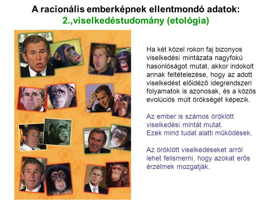 A racionális emberképnek ellentmondó adatok: 2.,viselkedéstudomány (etológia) Ha két közel rokon faj bizonyos viselkedési mintázata nagyfokú hasonlósá