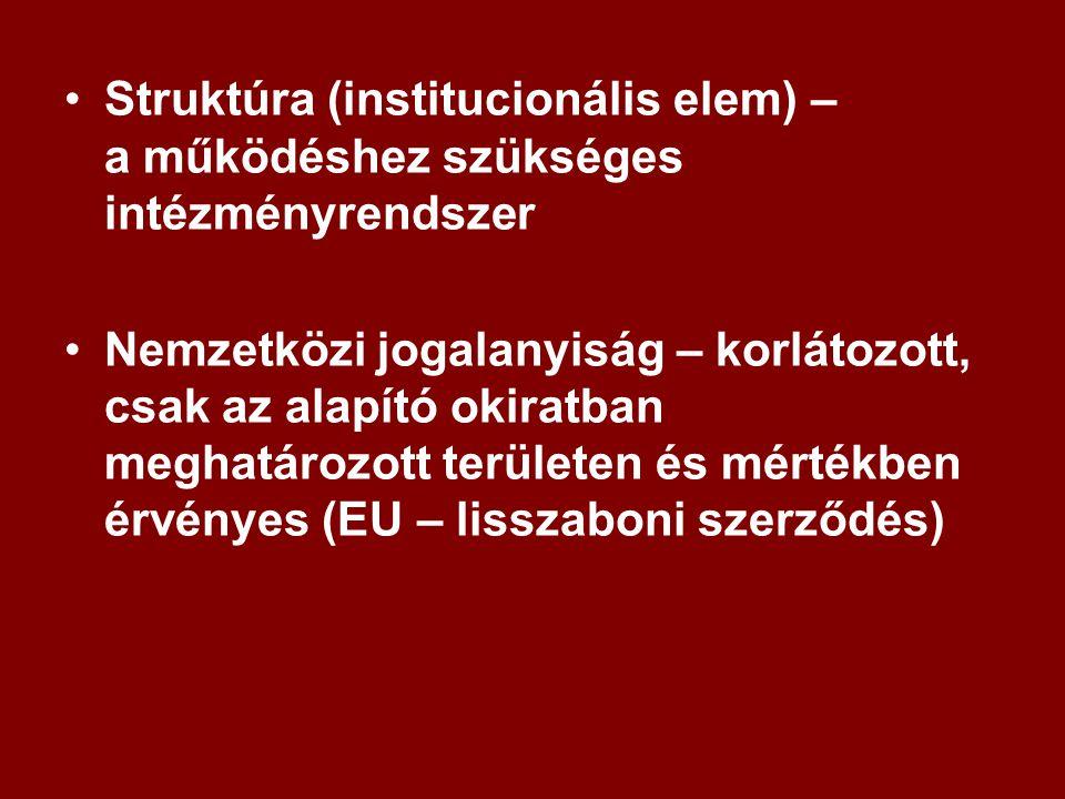 Struktúra (institucionális elem) – a működéshez szükséges intézményrendszer Nemzetközi jogalanyiság – korlátozott, csak az alapító okiratban meghatározott területen és mértékben érvényes (EU – lisszaboni szerződés)
