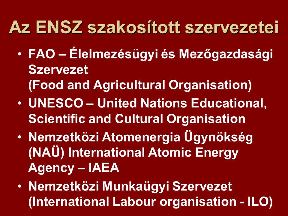 Az ENSZ szakosított szervezetei FAO – Élelmezésügyi és Mezőgazdasági Szervezet (Food and Agricultural Organisation) UNESCO – United Nations Educational, Scientific and Cultural Organisation Nemzetközi Atomenergia Ügynökség (NAÜ) International Atomic Energy Agency – IAEA Nemzetközi Munkaügyi Szervezet (International Labour organisation - ILO)