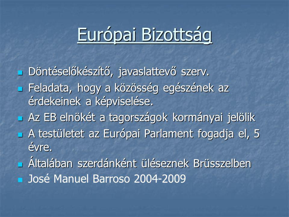 Európai Bizottság Döntéselőkészítő, javaslattevő szerv. Döntéselőkészítő, javaslattevő szerv. Feladata, hogy a közösség egészének az érdekeinek a képv