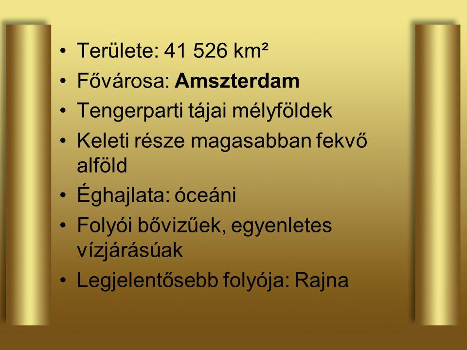 Területe: 41 526 km² Fővárosa: Amszterdam Tengerparti tájai mélyföldek Keleti része magasabban fekvő alföld Éghajlata: óceáni Folyói bővizűek, egyenle