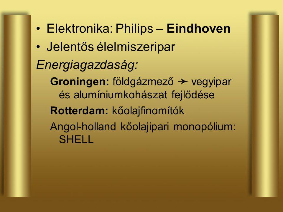 Elektronika: Philips – Eindhoven Jelentős élelmiszeripar Energiagazdaság: Groningen: földgázmező ➛ vegyipar és alumíniumkohászat fejlődése Rotterdam: