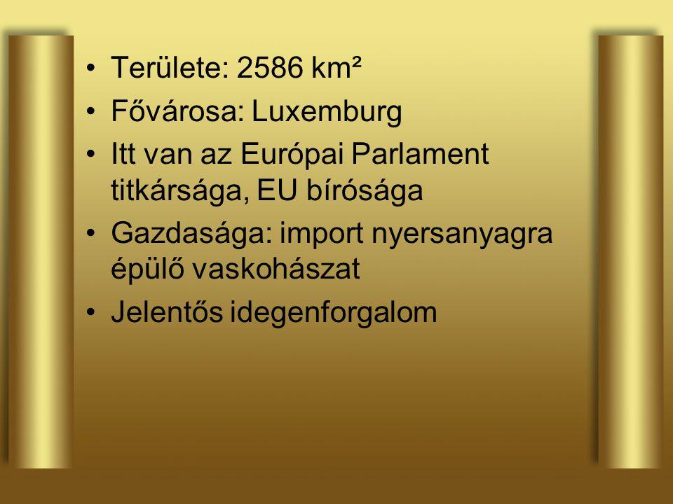 Területe: 2586 km² Fővárosa: Luxemburg Itt van az Európai Parlament titkársága, EU bírósága Gazdasága: import nyersanyagra épülő vaskohászat Jelentős