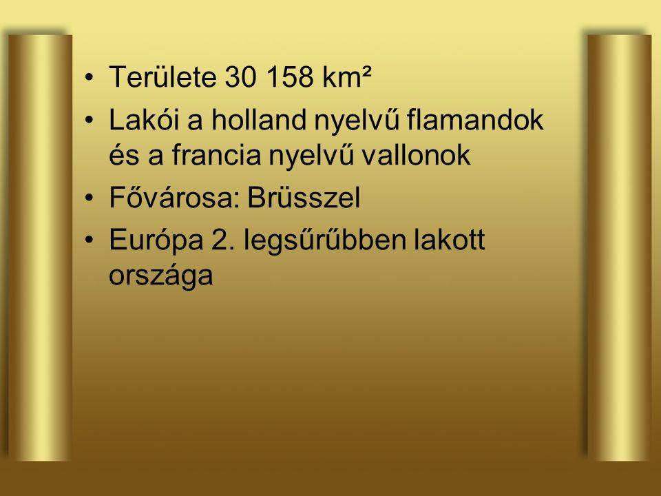 Területe 30 158 km² Lakói a holland nyelvű flamandok és a francia nyelvű vallonok Fővárosa: Brüsszel Európa 2. legsűrűbben lakott országa