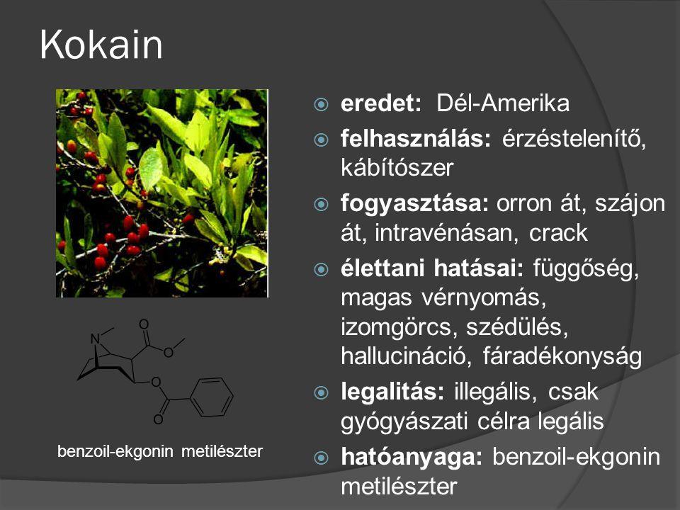 Kokain  eredet: Dél-Amerika  felhasználás: érzéstelenítő, kábítószer  fogyasztása: orron át, szájon át, intravénásan, crack  élettani hatásai: füg