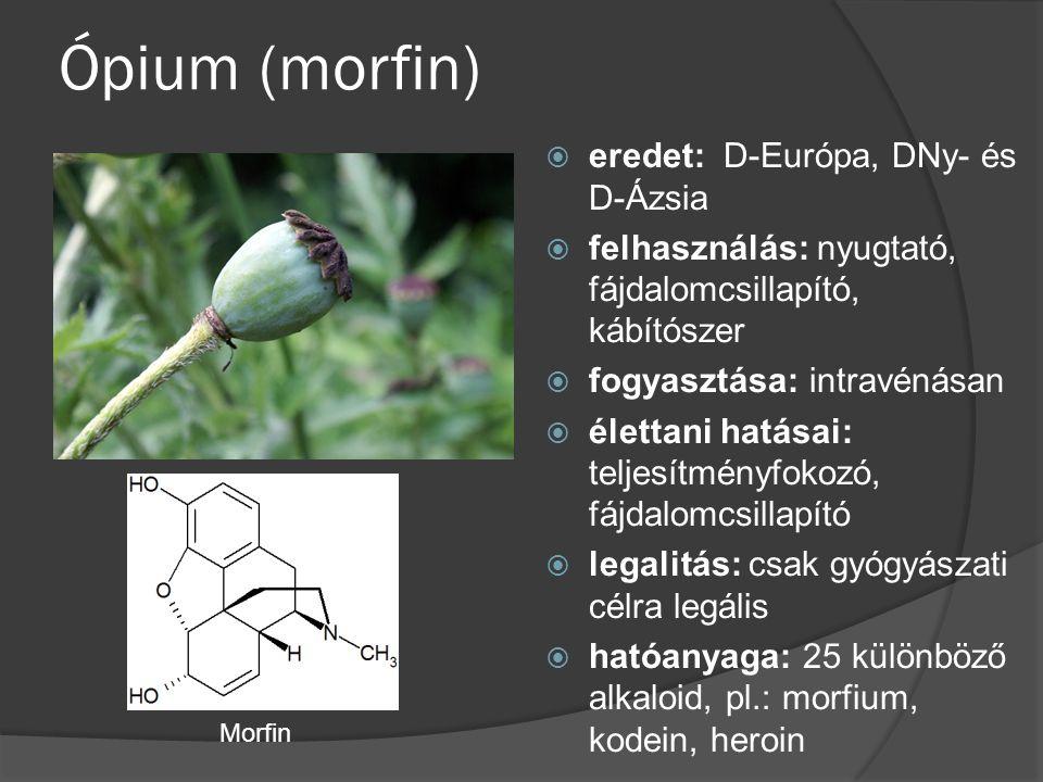 Ópium (morfin)  eredet: D-Európa, DNy- és D-Ázsia  felhasználás: nyugtató, fájdalomcsillapító, kábítószer  fogyasztása: intravénásan  élettani hat