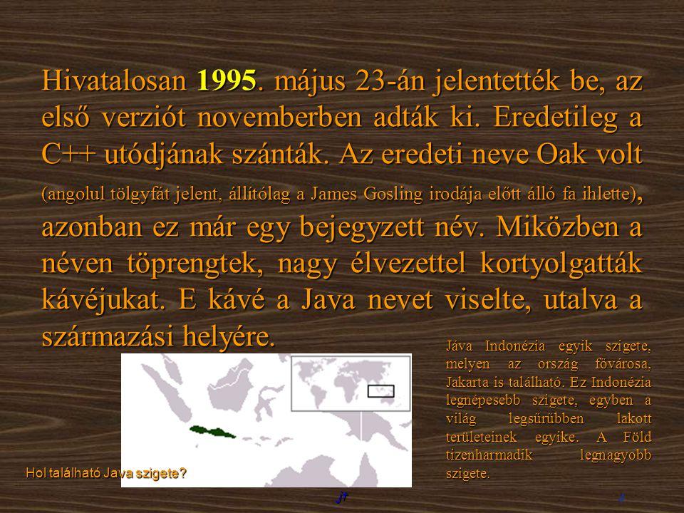 jt 4 Hivatalosan 1995. május 23-án jelentették be, az első verziót novemberben adták ki. Eredetileg a C++ utódjának szánták. Az eredeti neve Oak volt