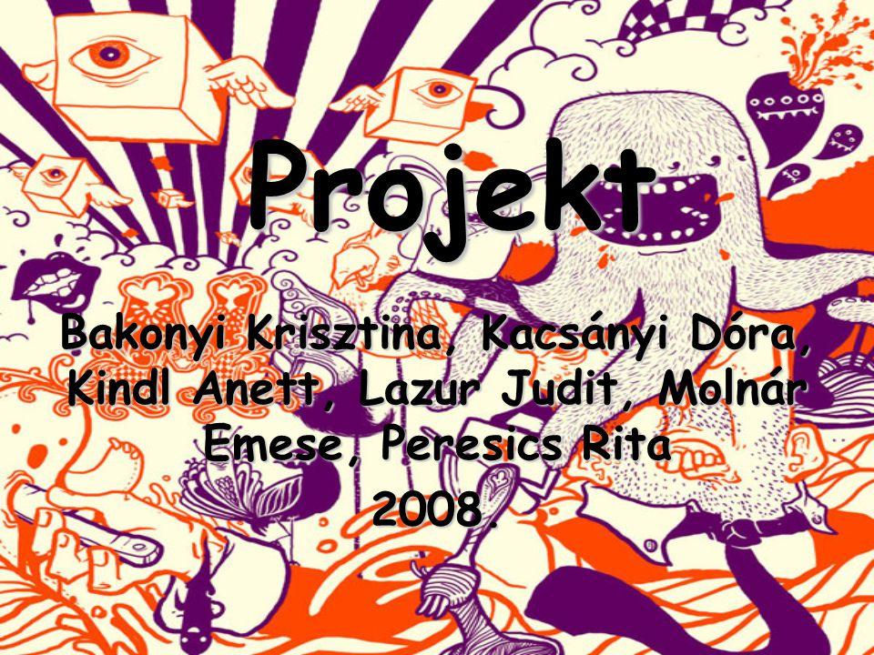 Projekt Projekt Bakonyi Krisztina, Kacsányi Dóra, Kindl Anett, Lazur Judit, Molnár Emese, Peresics Rita 2008.