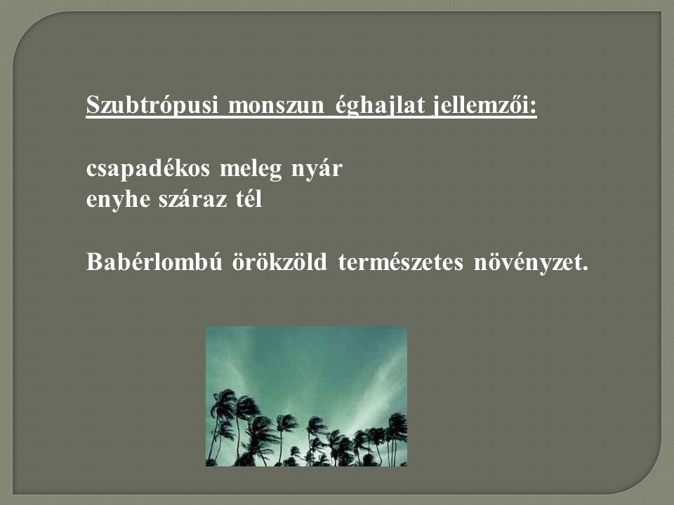 Szubtrópusi monszun éghajlat jellemzői: csapadékos meleg nyár enyhe száraz tél Babérlombú örökzöld természetes növényzet.