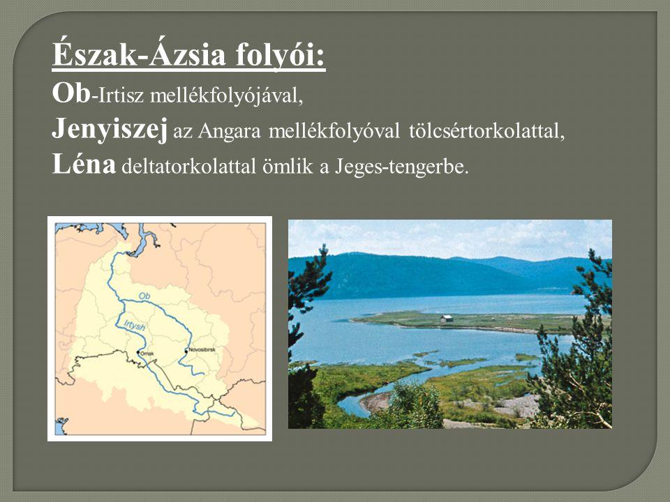 Észak-Ázsia folyói: Ob -Irtisz mellékfolyójával, Jenyiszej az Angara mellékfolyóval tölcsértorkolattal, Léna deltatorkolattal ömlik a Jeges-tengerbe.