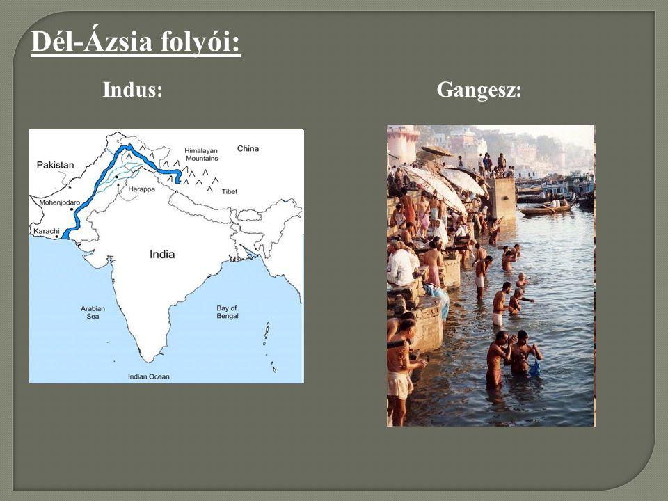 Dél-Ázsia folyói: Indus:Gangesz: