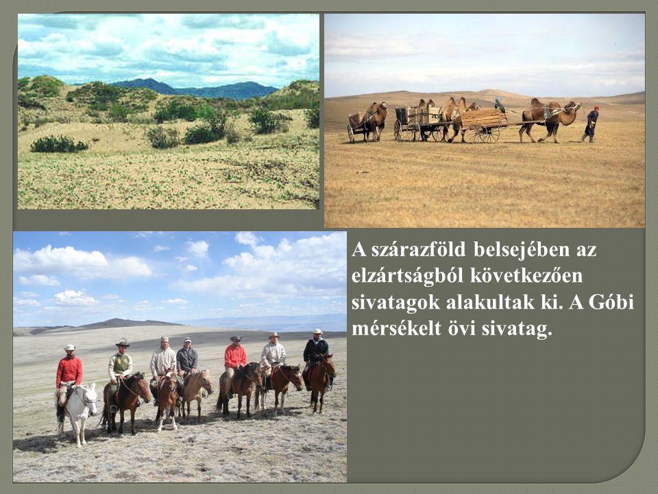 A szárazföld belsejében az elzártságból következően sivatagok alakultak ki. A Góbi mérsékelt övi sivatag.