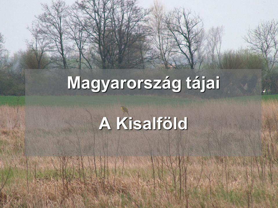 Magyarország tájai A Kisalföld