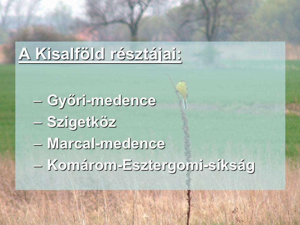A Kisalföld résztájai: – Győri-medence – Szigetköz – Marcal-medence – Komárom-Esztergomi-síkság