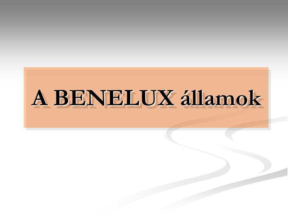 BelgiumBelgium Államforma: Államforma: alkotmányos monarchia Főváros: Brüsszel Terület: 30 528 km² Népesség: 10,7 millió Nemzeti valuta: euró A belga szövetségi államot három régió alkotja: északon a holland ajkú Flandria, délen a franciául beszélő Vallónia, továbbá a kétnyelvű főváros, Brüsszel, ahol a holland és a francia egyaránt hivatalos nyelv.