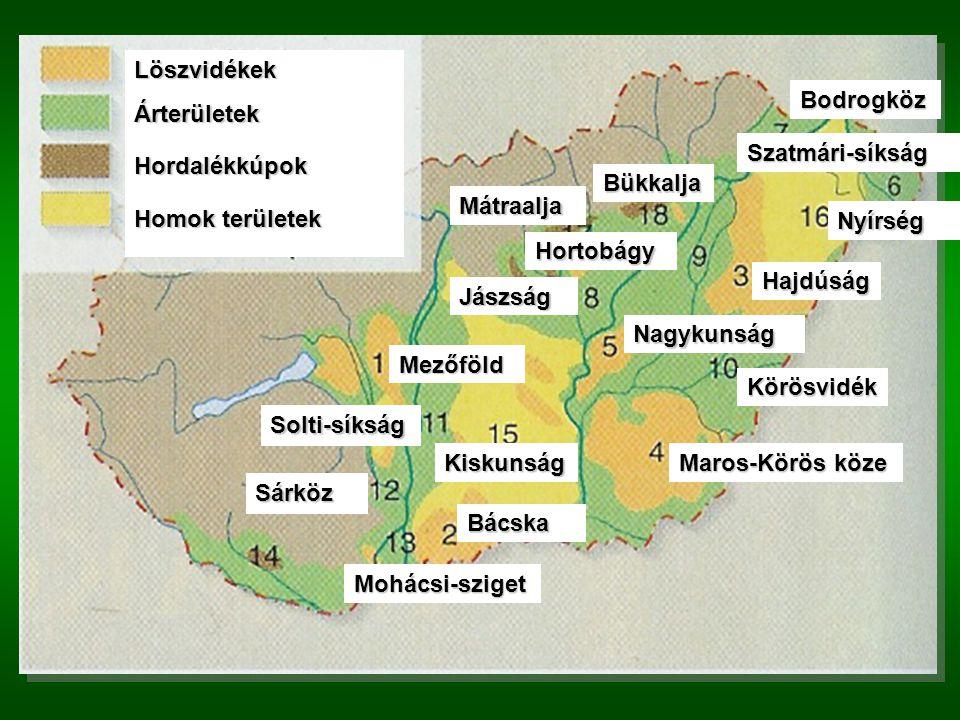 Hordalékkúpok: Mátraalja, Bükkalja, Homokos területek: Kiskunság, Nyírség.