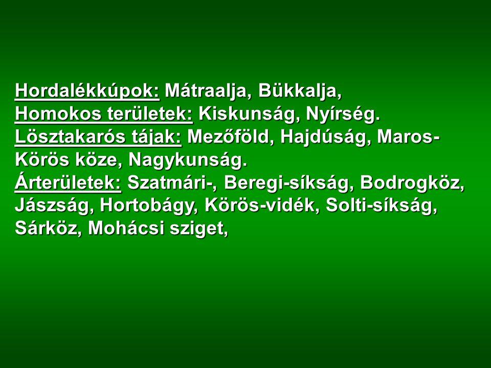 Hordalékkúpok: Mátraalja, Bükkalja, Homokos területek: Kiskunság, Nyírség. Lösztakarós tájak: Mezőföld, Hajdúság, Maros- Körös köze, Nagykunság. Árter