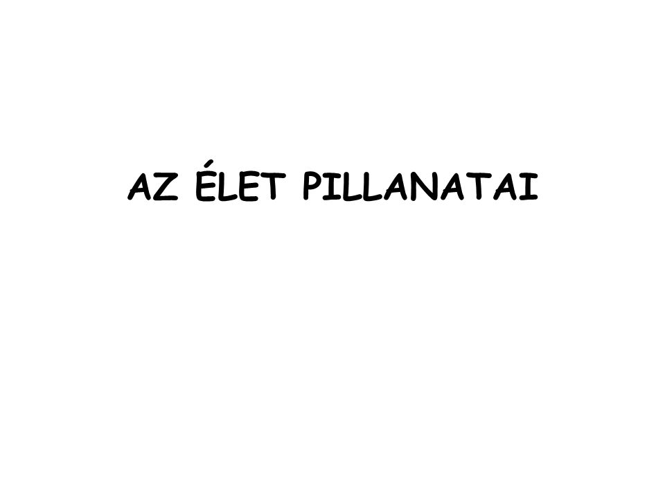 AZ ÉLET PILLANATAI