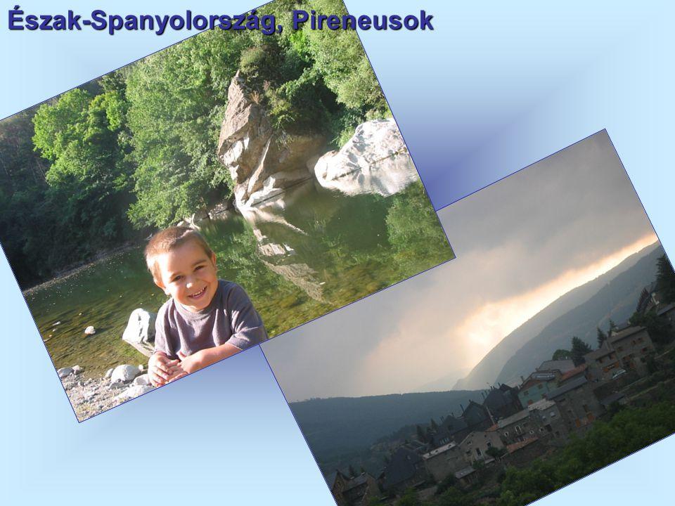 Észak-Spanyolország, Pireneusok
