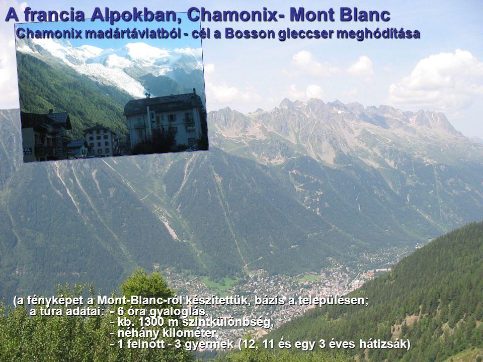 A francia Alpokban, Chamonix- Mont Blanc Chamonix madártávlatból - cél a Bosson gleccser meghódítása Chamonix madártávlatból - cél a Bosson gleccser m