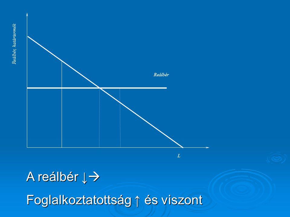 Reálbér, határtermék L Reálbér A reálbér ↓  Foglalkoztatottság ↑ és viszont