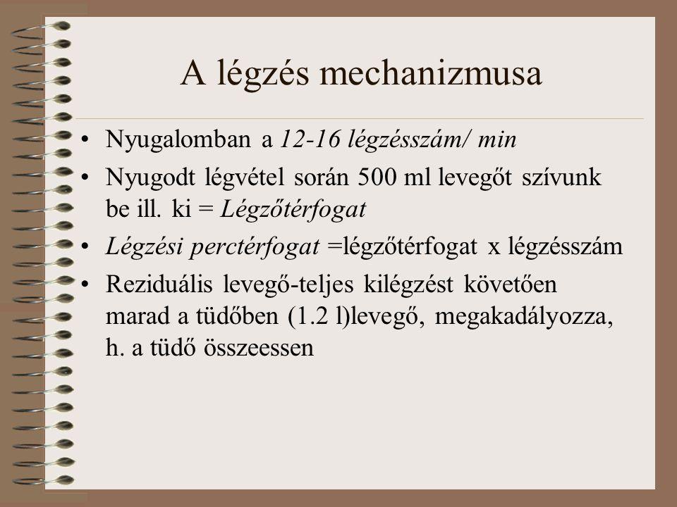 A légzés mechanizmusa Nyugalomban a 12-16 légzésszám/ min Nyugodt légvétel során 500 ml levegőt szívunk be ill. ki = Légzőtérfogat Légzési perctérfoga