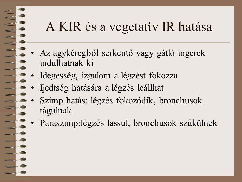 A KIR és a vegetatív IR hatása Az agykéregből serkentő vagy gátló ingerek indulhatnak ki Idegesség, izgalom a légzést fokozza Ijedtség hatására a légz