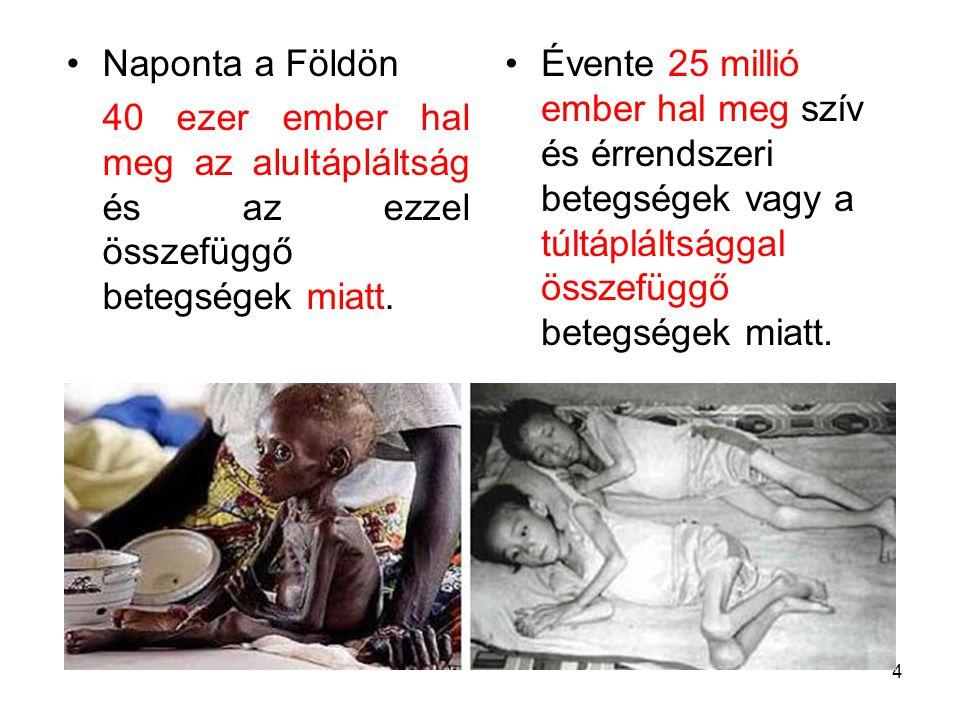 4 Naponta a Földön 40 ezer ember hal meg az alultápláltság és az ezzel összefüggő betegségek miatt. Évente 25 millió ember hal meg szív és érrendszeri