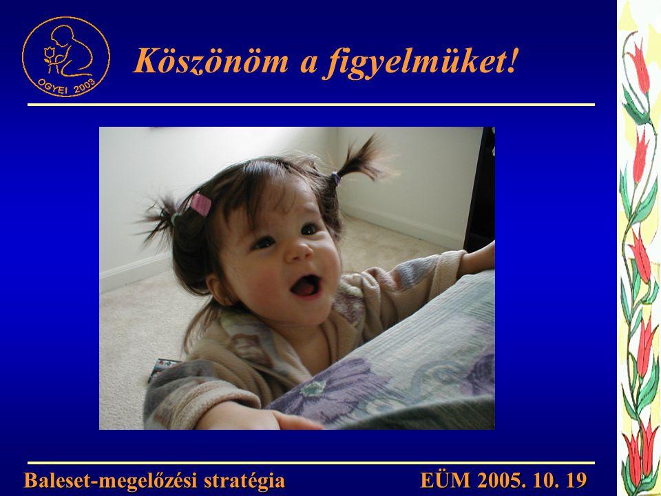Köszönöm a figyelmüket! Baleset-megelőzési stratégia EÜM 2005. 10. 19