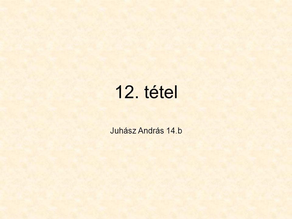 12. tétel Juhász András 14.b
