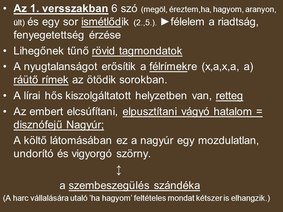2-3.v.sz.