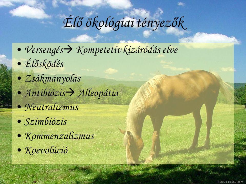 Élő ökológiai tényezők Versengés  Kompetetív kizáródás elve Élősködés Zsákmányolás Antibiózis  Alleopátia Neutralizmus Szimbiózis Kommenzalizmus Koe