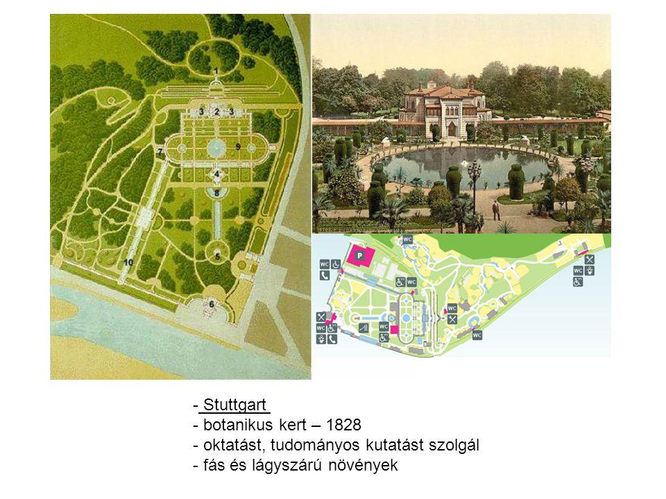 - Stuttgart - botanikus kert – 1828 - oktatást, tudományos kutatást szolgál - fás és lágyszárú növények