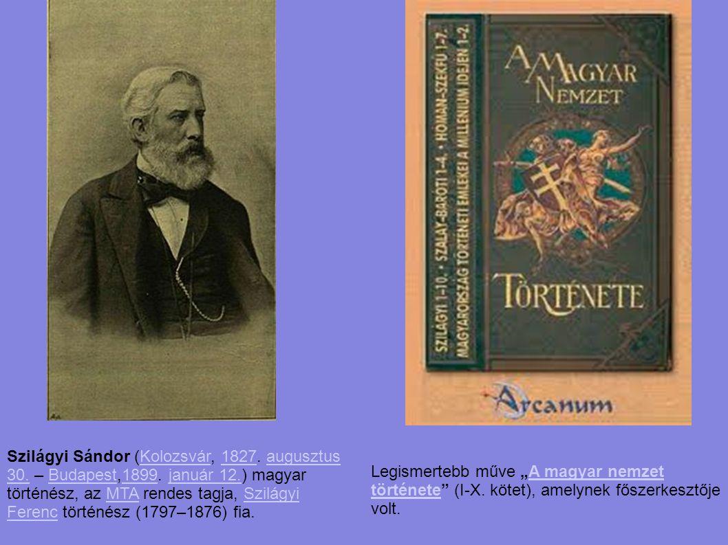 Szilágyi Sándor (Kolozsvár, 1827. augusztus 30. – Budapest,1899. január 12.) magyar történész, az MTA rendes tagja, Szilágyi Ferenc történész (1797–18