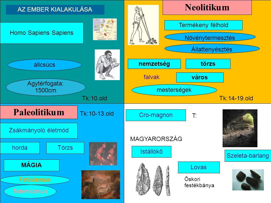 Agytérfogata: 1500cm Homo Sapiens Sapiens állcsúcs AZ EMBER KIALAKULÁSA Paleolitikum Zsákmányoló életmód hordaTörzs MÁGIA Totemizmus Fetisizmus Neolit