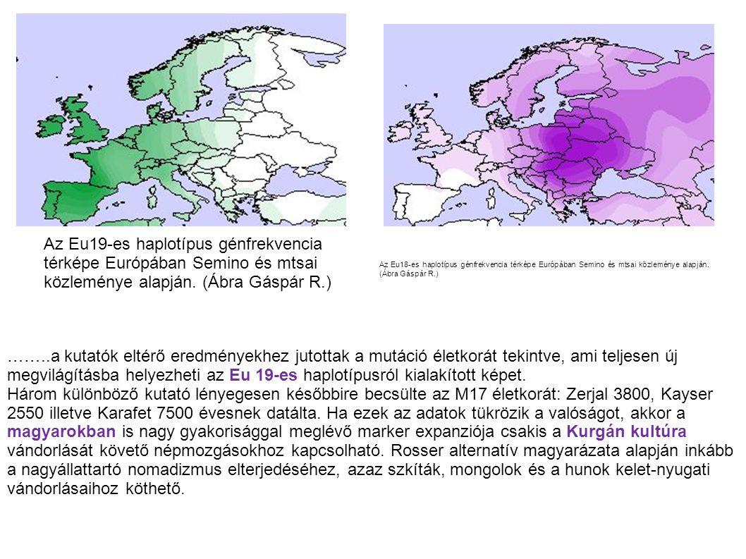Az Eu19-es haplotípus génfrekvencia térképe Európában Semino és mtsai közleménye alapján. (Ábra Gáspár R.) Az Eu18-es haplotípus génfrekvencia térképe