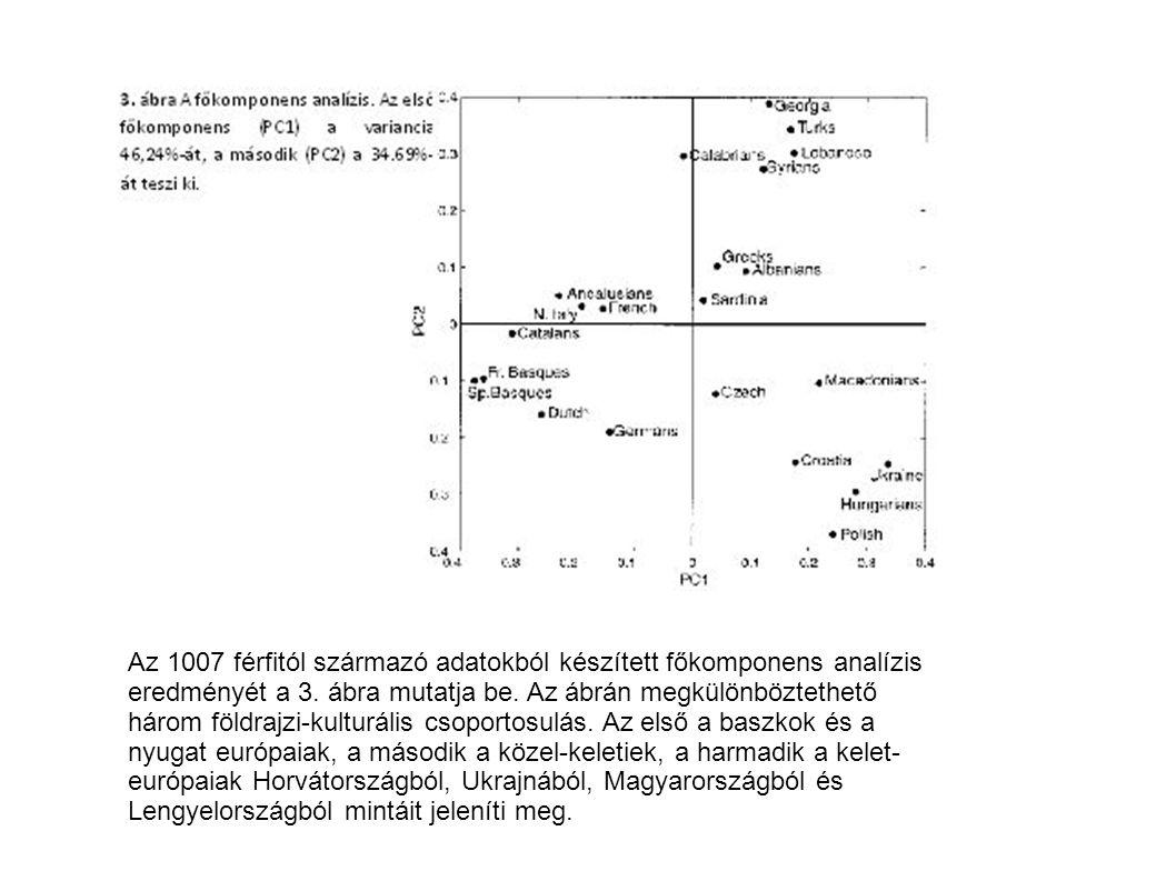 Az 1007 férfitól származó adatokból készített főkomponens analízis eredményét a 3. ábra mutatja be. Az ábrán megkülönböztethető három földrajzi-kultur
