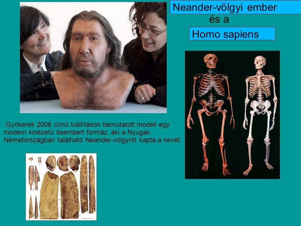 Egy nemrégiben megjelent tanulmány rácáfol az őseinkről eddig alkotott képre.