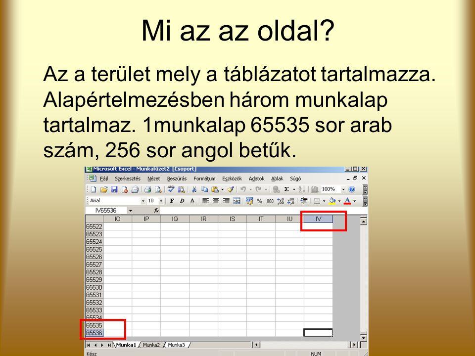 Mi az az oldal? Az a terület mely a táblázatot tartalmazza. Alapértelmezésben három munkalap tartalmaz. 1munkalap 65535 sor arab szám, 256 sor angol b