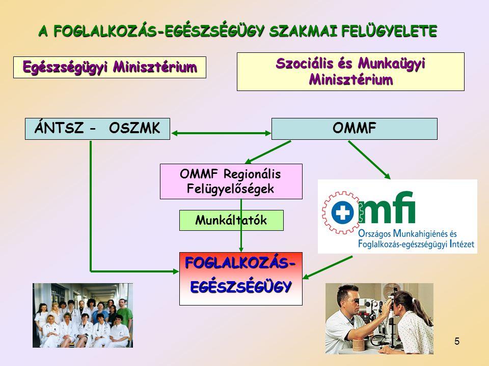 5 A FOGLALKOZÁS-EGÉSZSÉGÜGY SZAKMAI FELÜGYELETE Egészségügyi Minisztérium Szociális és Munkaügyi Minisztérium ÁNTSZ - OSZMKOMMF FOGLALKOZÁS-EGÉSZSÉGÜG