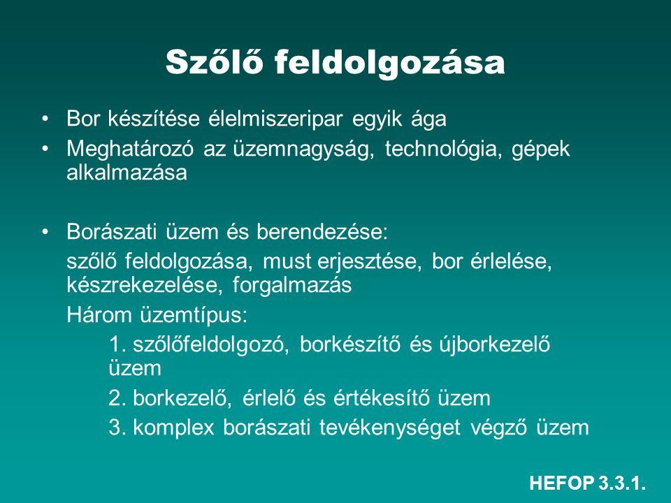 HEFOP 3.3.1. Szőlő feldolgozása Bor készítése élelmiszeripar egyik ága Meghatározó az üzemnagyság, technológia, gépek alkalmazása Borászati üzem és be