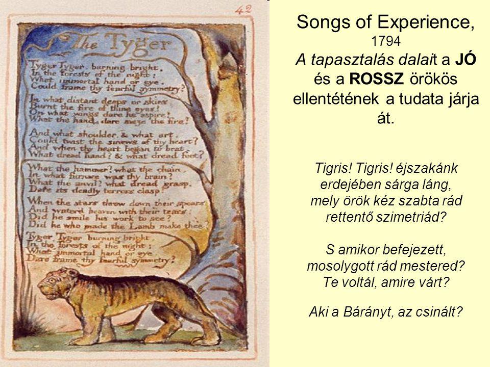 Songs of Experience, 1794 A tapasztalás dalait a JÓ és a ROSSZ örökös ellentétének a tudata járja át. Tigris! Tigris! éjszakánk erdejében sárga láng,