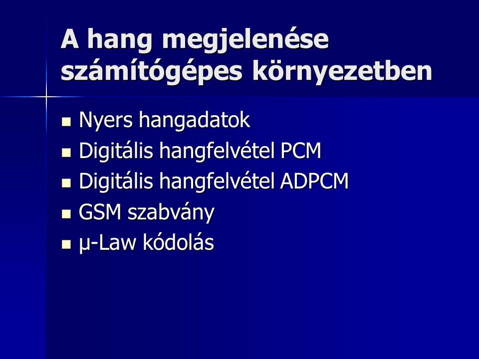 A hang megjelenése számítógépes környezetben Nyers hangadatok Nyers hangadatok Digitális hangfelvétel PCM Digitális hangfelvétel PCM Digitális hangfel