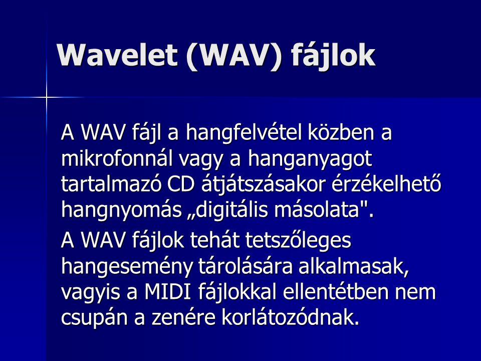 """Wavelet (WAV) fájlok A WAV fájl a hangfelvétel közben a mikrofonnál vagy a hanganyagot tartalmazó CD átjátszásakor érzékelhető hangnyomás """"digitális m"""
