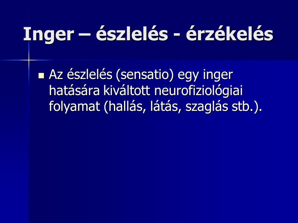 Inger – észlelés - érzékelés Az észlelés (sensatio) egy inger hatására kiváltott neurofiziológiai folyamat (hallás, látás, szaglás stb.). Az észlelés