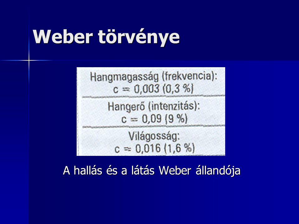 Weber törvénye A hallás és a látás Weber állandója