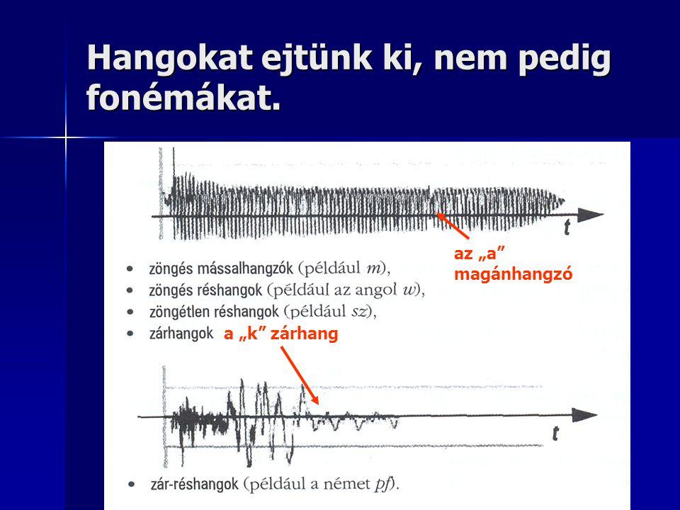 """Hangokat ejtünk ki, nem pedig fonémákat. az """"a"""" magánhangzó a """"k"""" zárhang"""